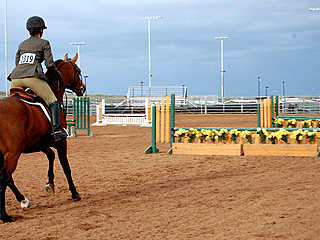 Cantering_Jumper